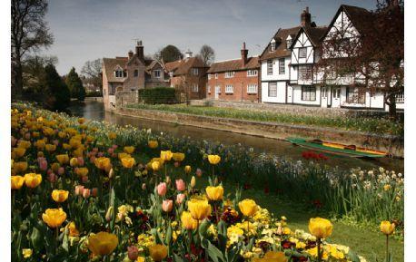 Studere i England - University of Kent