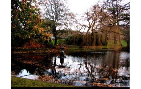 Studere i London - University of Roehampton
