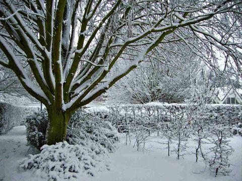 Studere i England - Writtle University College - vinter