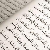 Studere arabisk